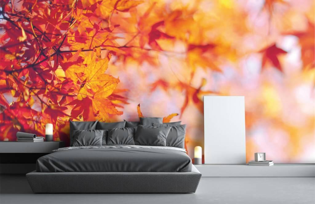 Löv Höstlöv 2
