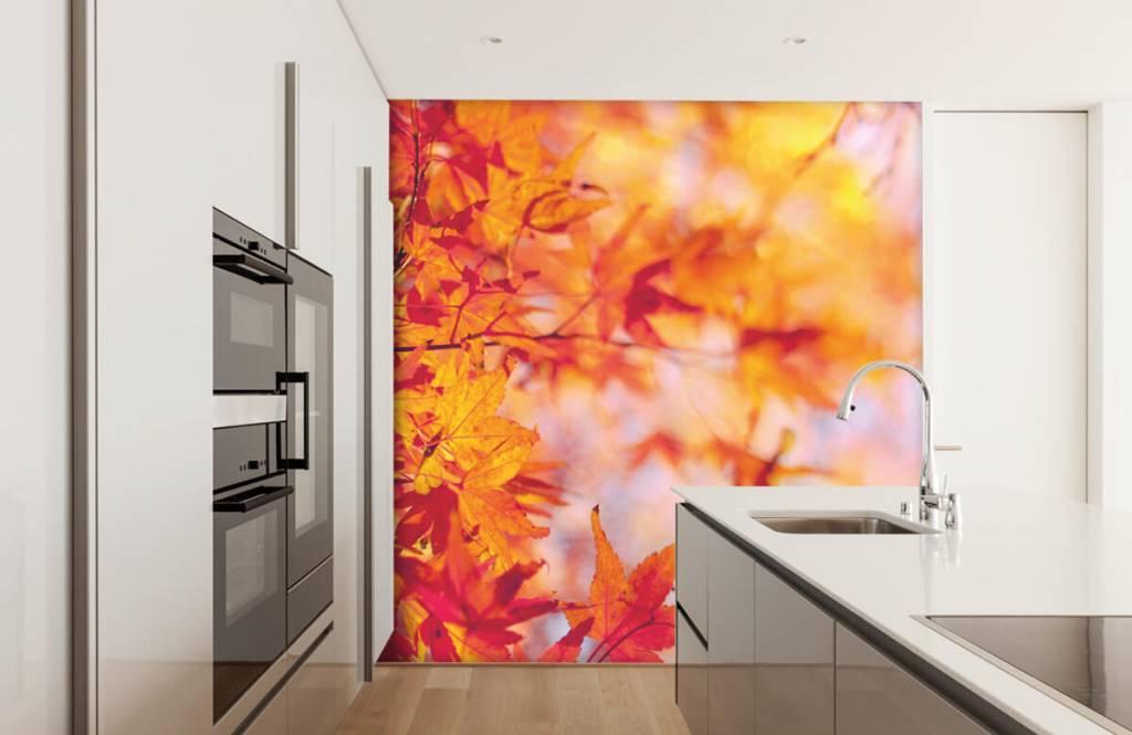 Löv Höstlöv 3
