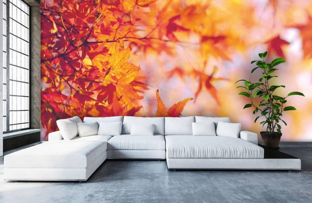 Löv Höstlöv 5