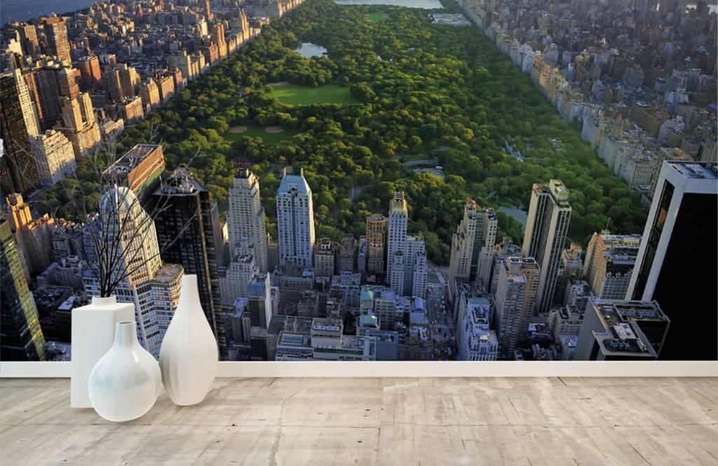Städer tapet Central parken 3