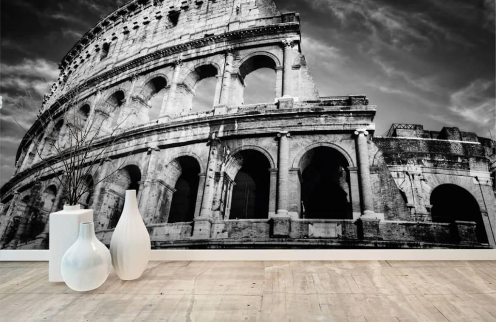 Svartvit tapet Colosseum i Rom 9