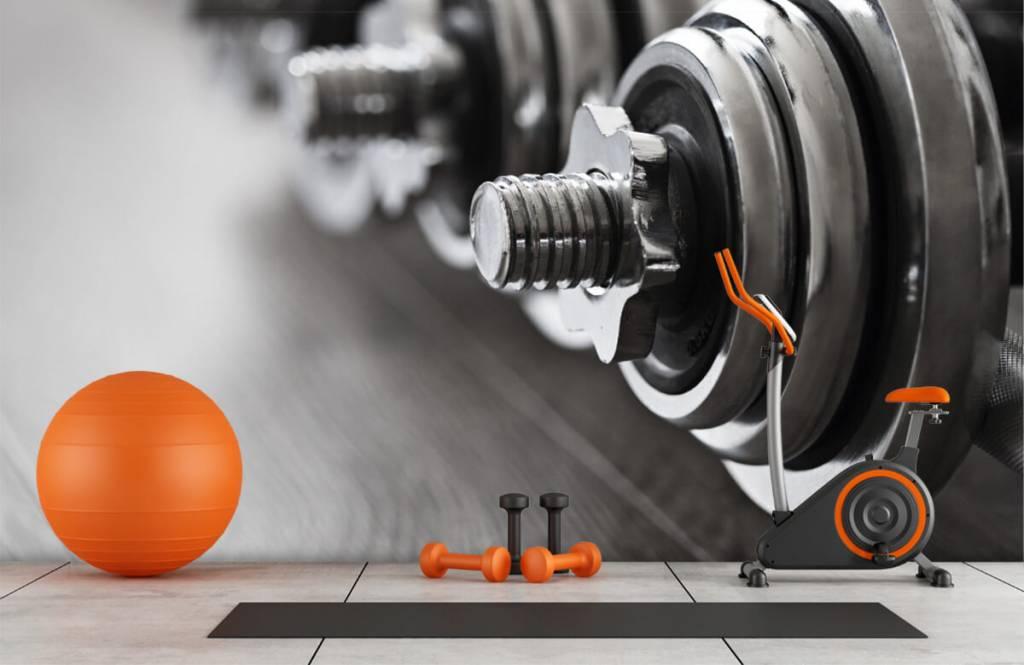 Fitness Klassiska hantlar 1