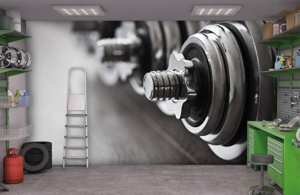 Fitness Klassiska hantlar 3