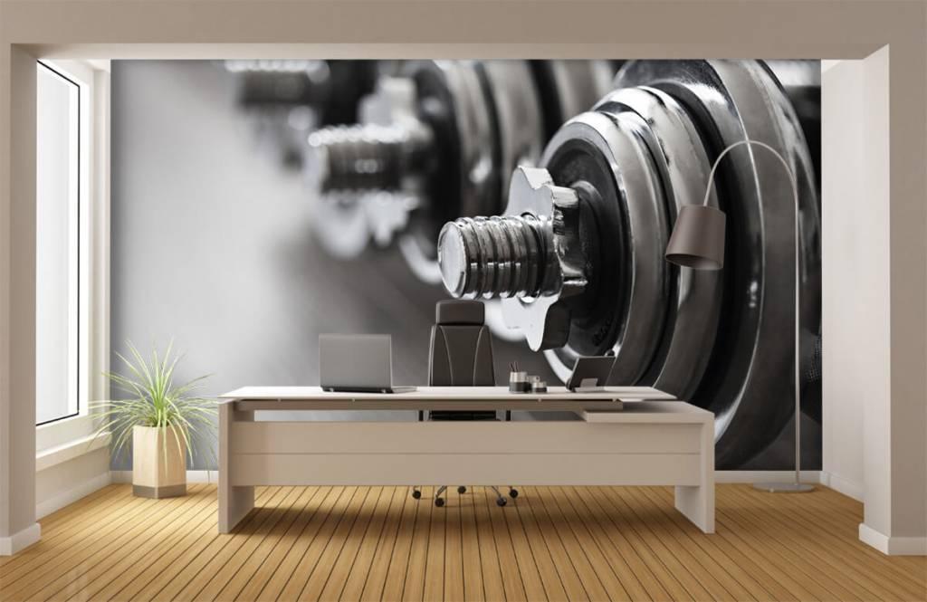 Fitness Klassiska hantlar 5
