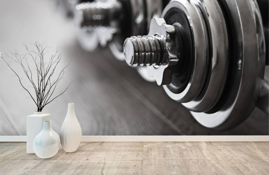 Fitness Klassiska hantlar 9