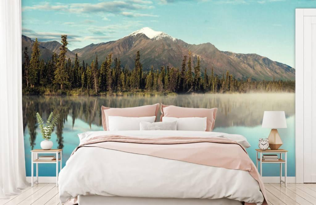 Berg landskap i Alaska 1