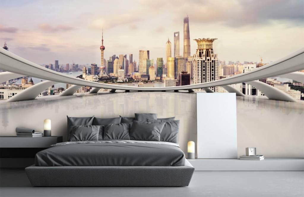 Skyline Shanghai skyline 4