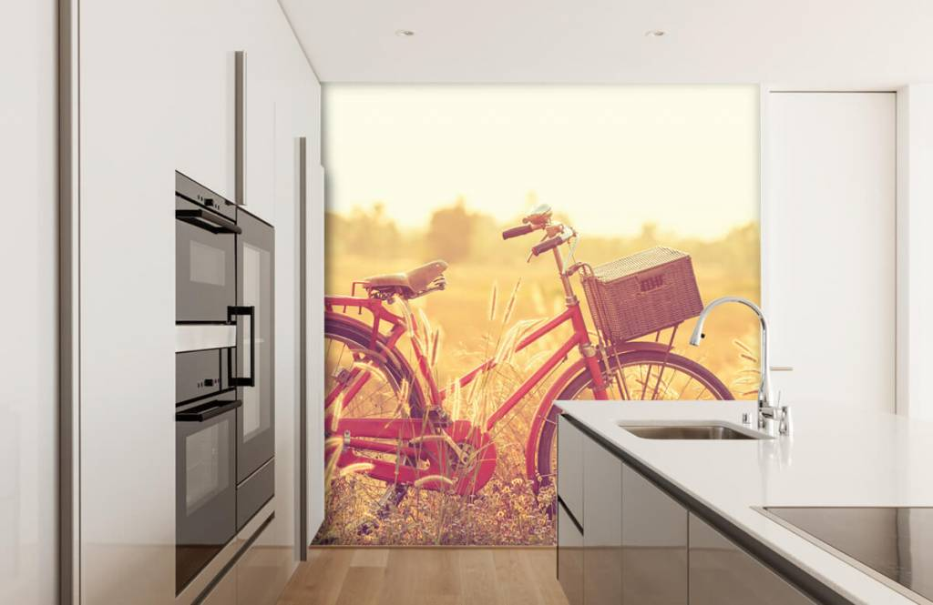 Landskap Vintage cykel 3