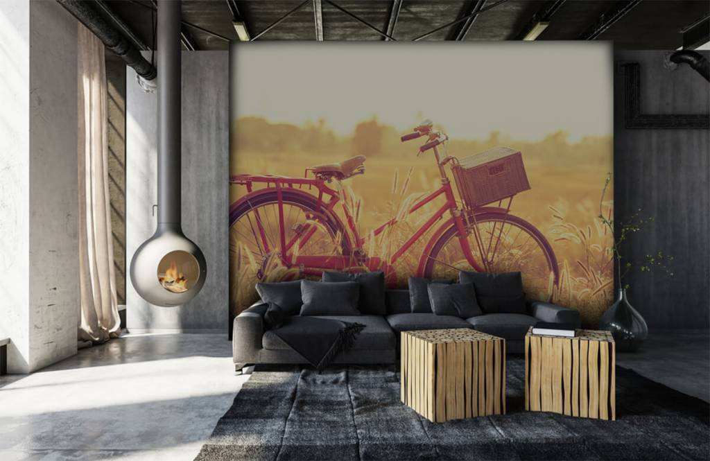 Landskap Vintage cykel 6