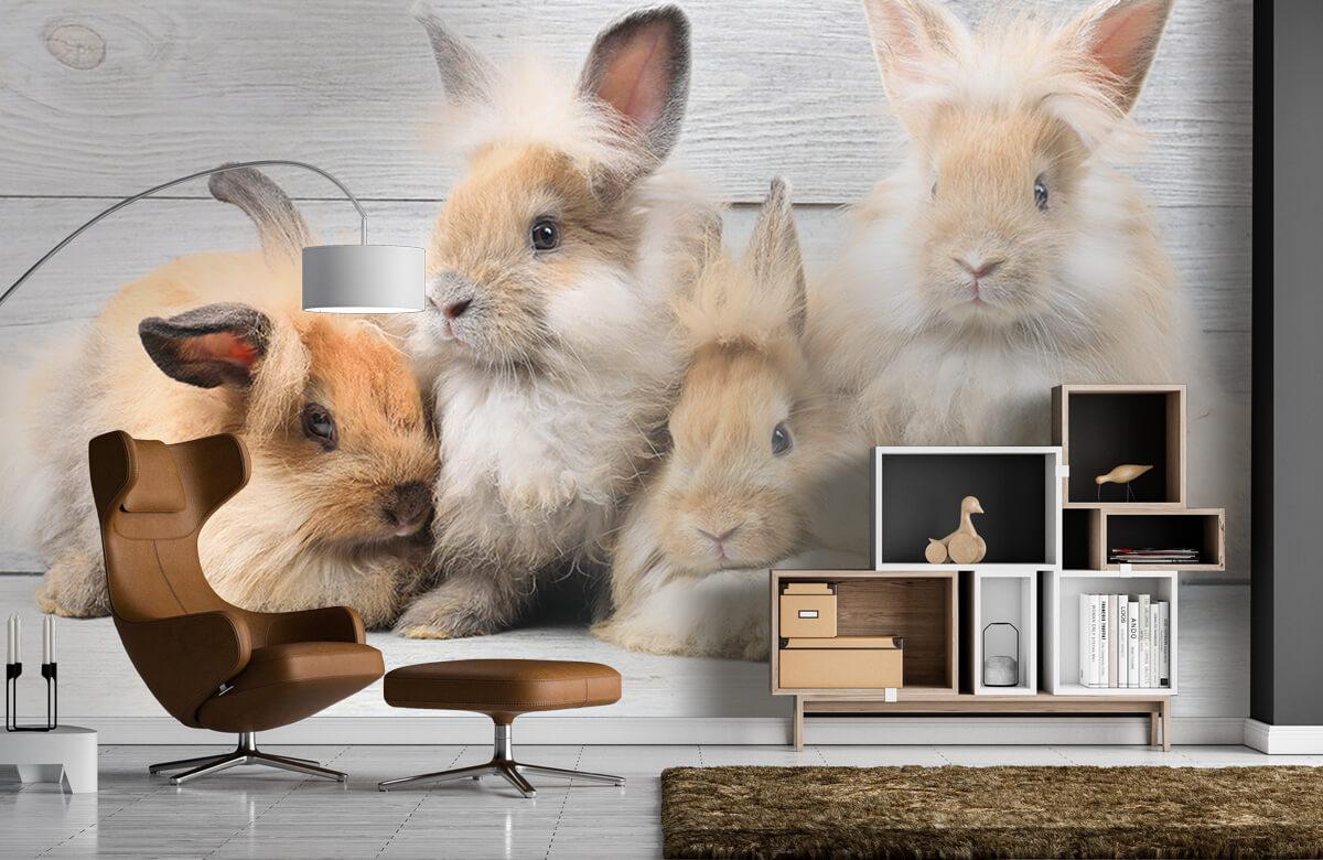 Wallpaper Små kaniner 7