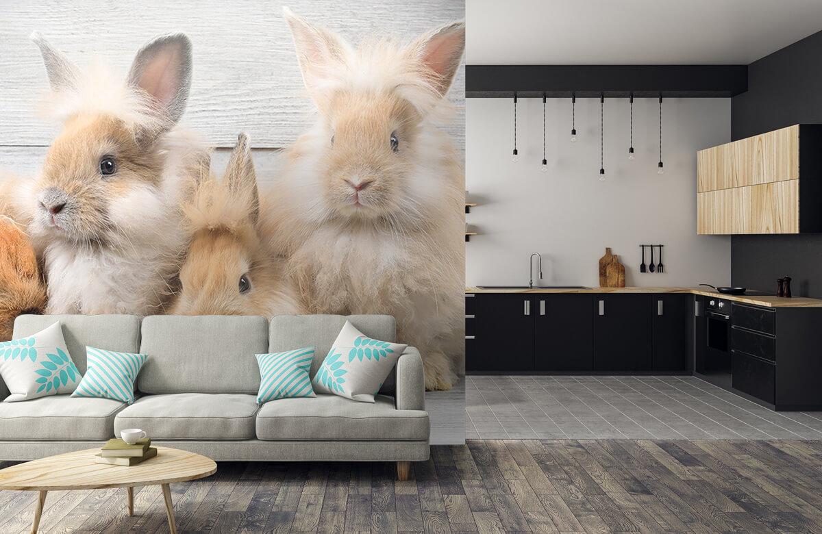 Wallpaper Små kaniner 8
