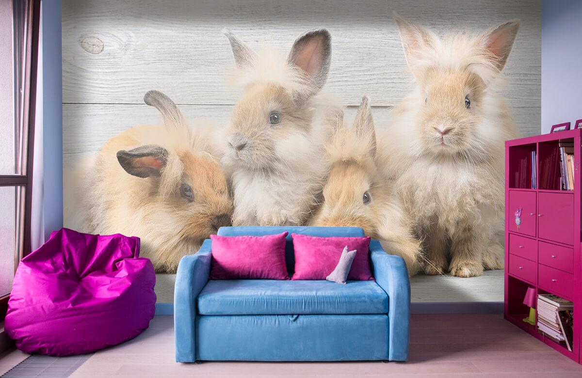 Wallpaper Små kaniner 1