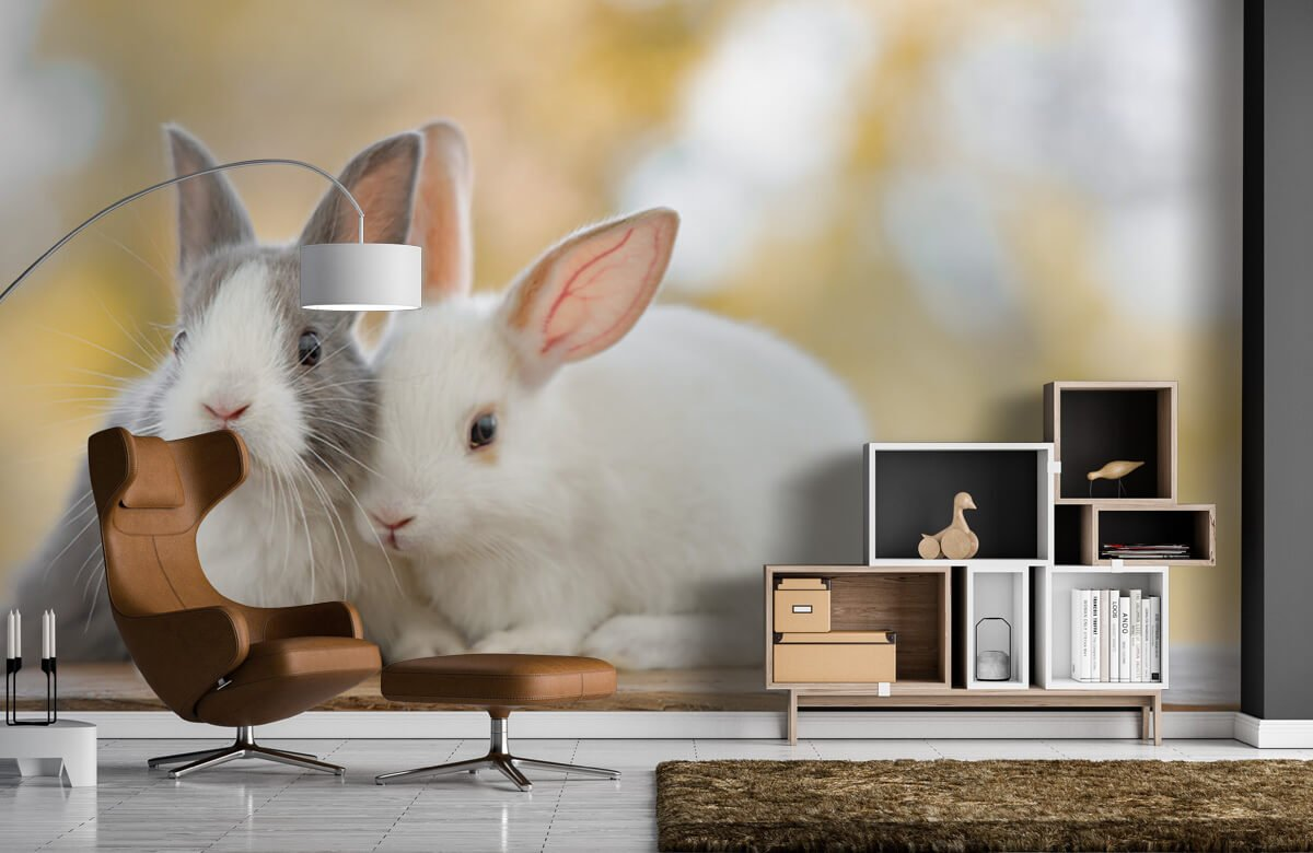 Wallpaper Närbild av kaniner 7