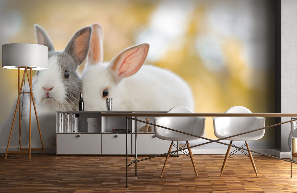 Wallpaper Närbild av kaniner 10