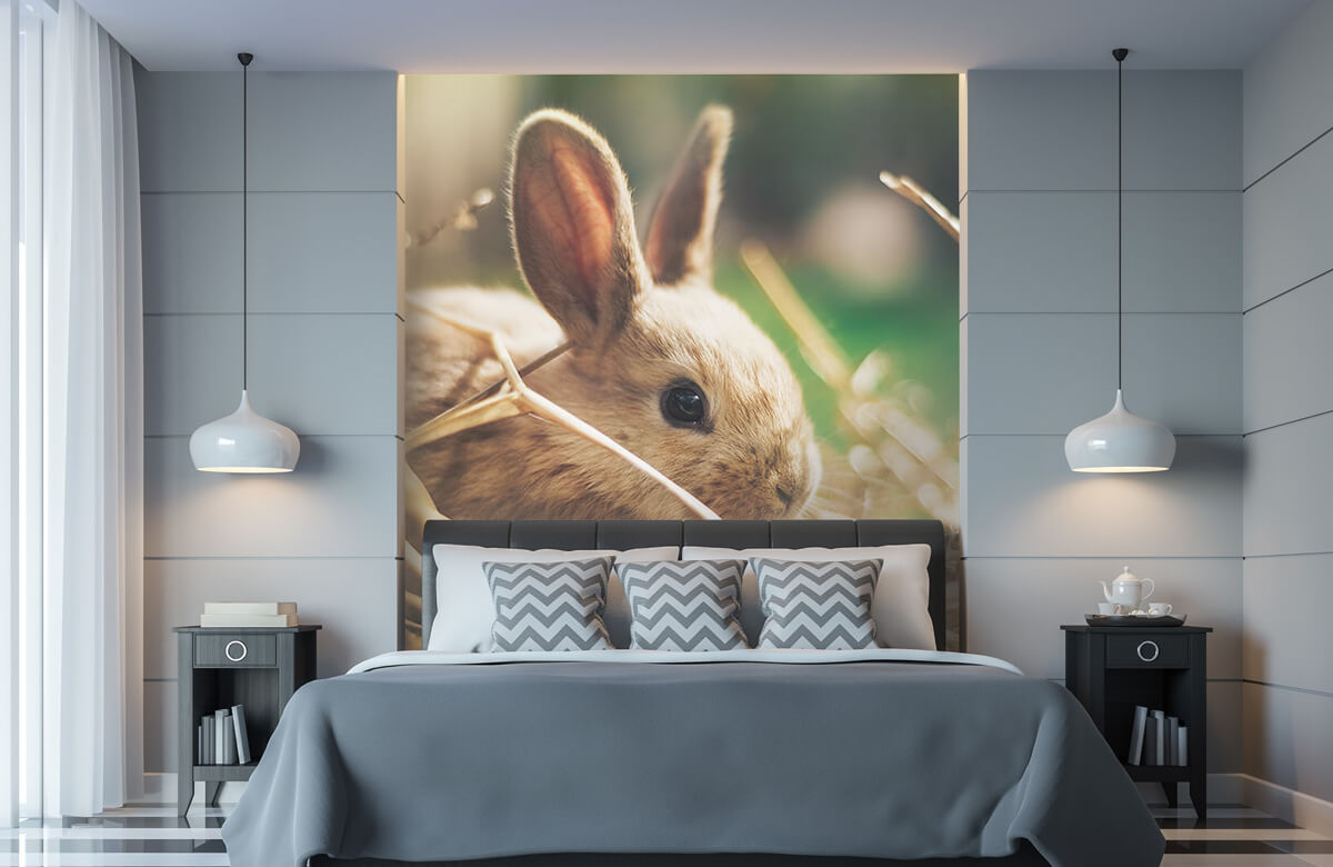 Wallpaper Kanin i halm 11