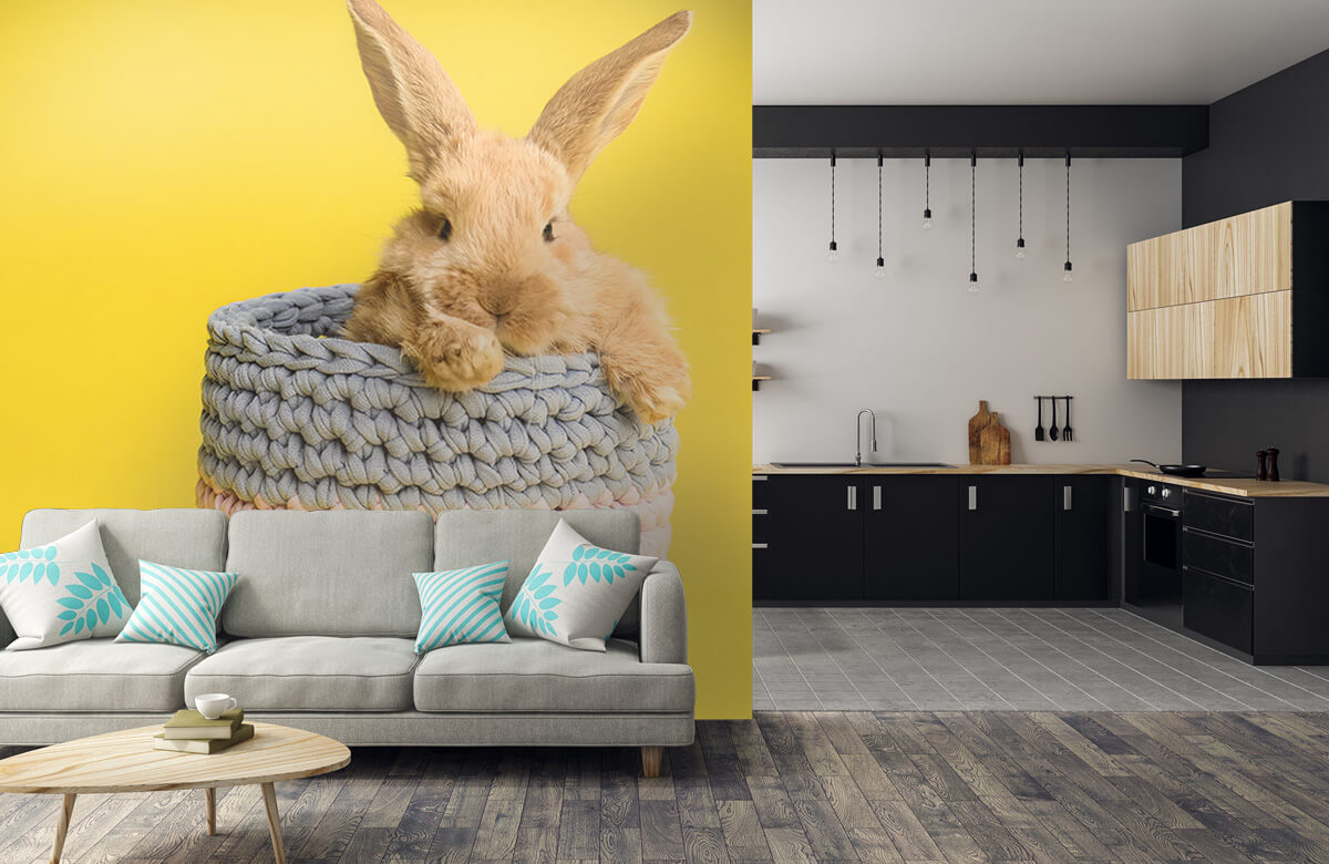 Wallpaper Kanin i korg 10