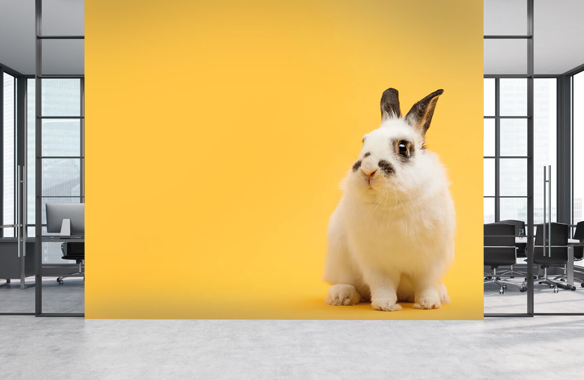 Wallpaper Posering av kanin 7
