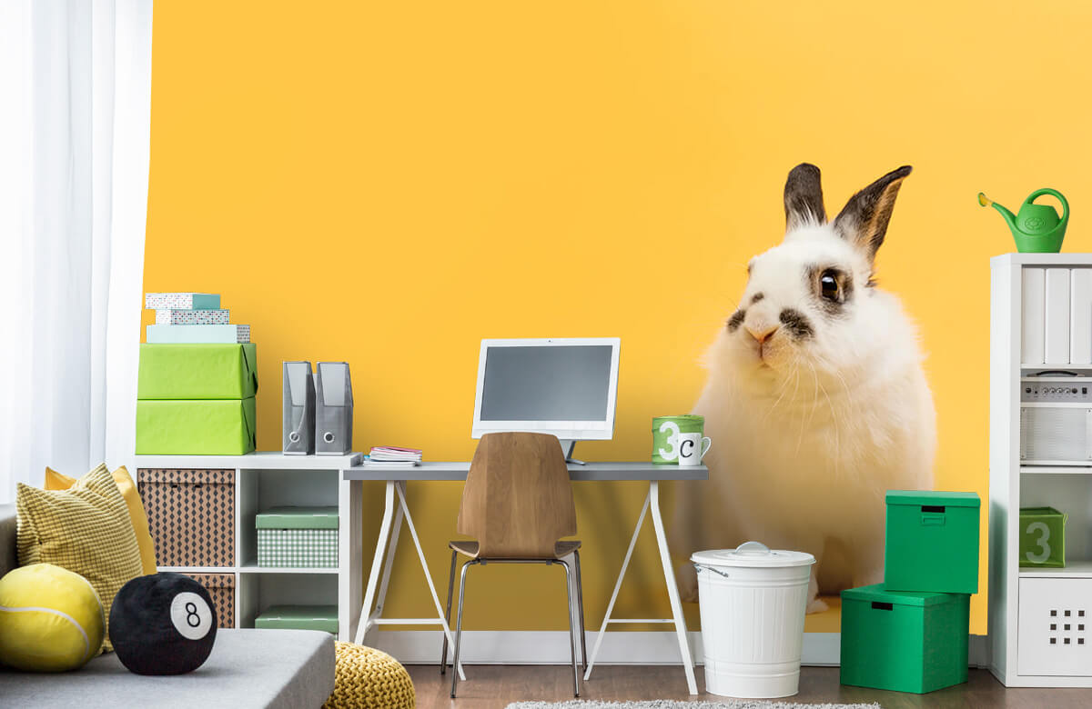 Wallpaper Posering av kanin 1