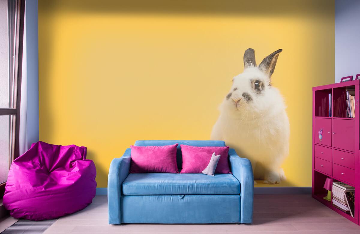 Wallpaper Posering av kanin 5