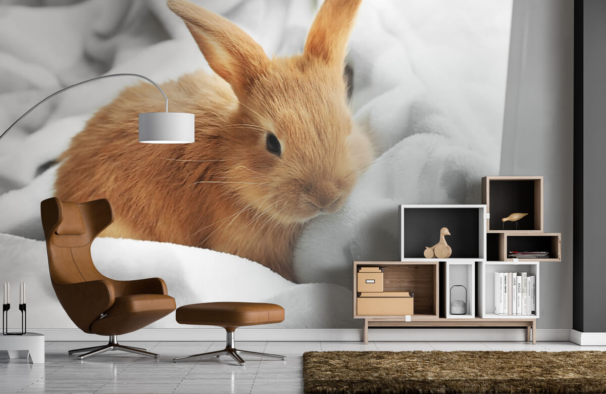 Wallpaper Brun kanin 7