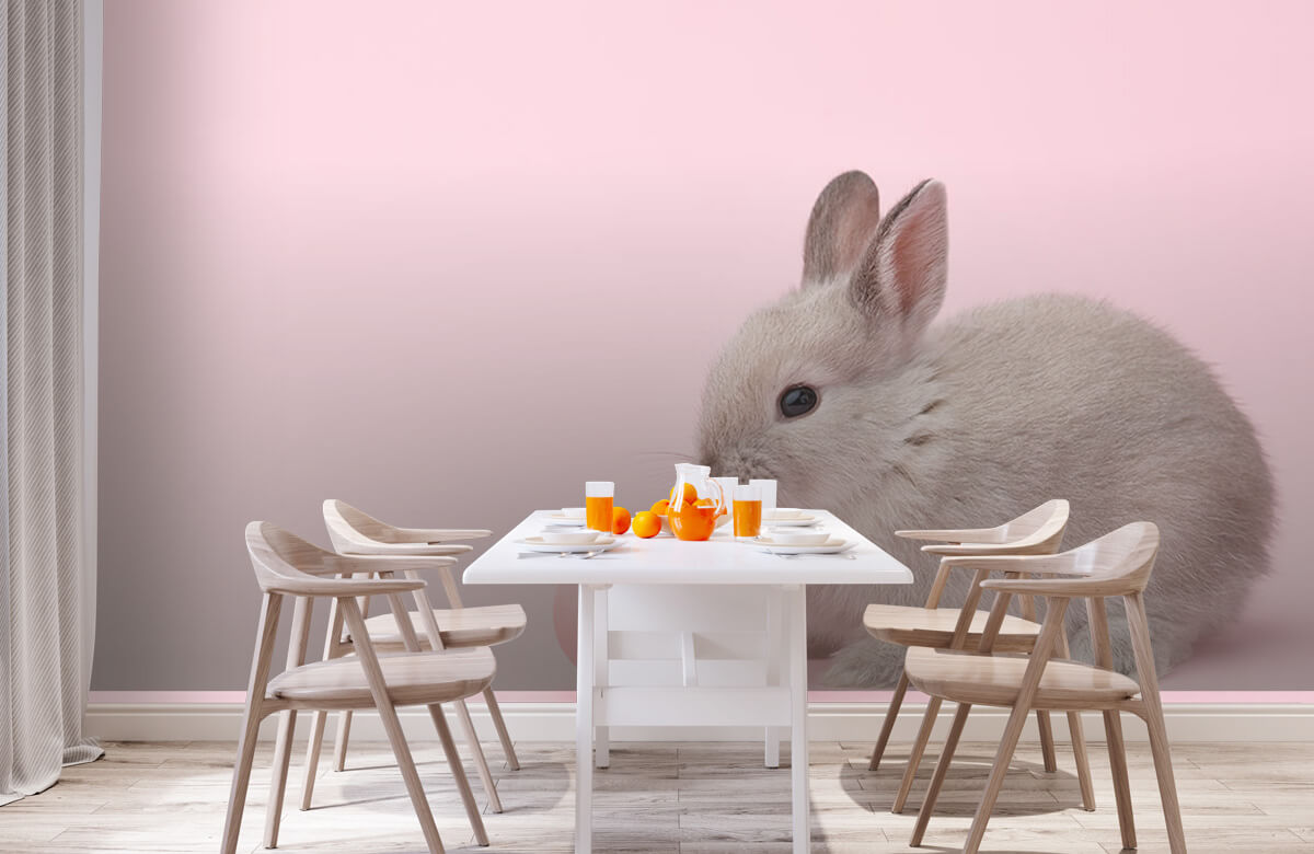 Wallpaper Kanin med ägg 2