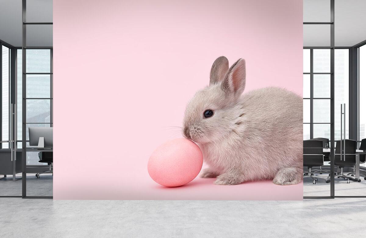 Wallpaper Kanin med ägg 6