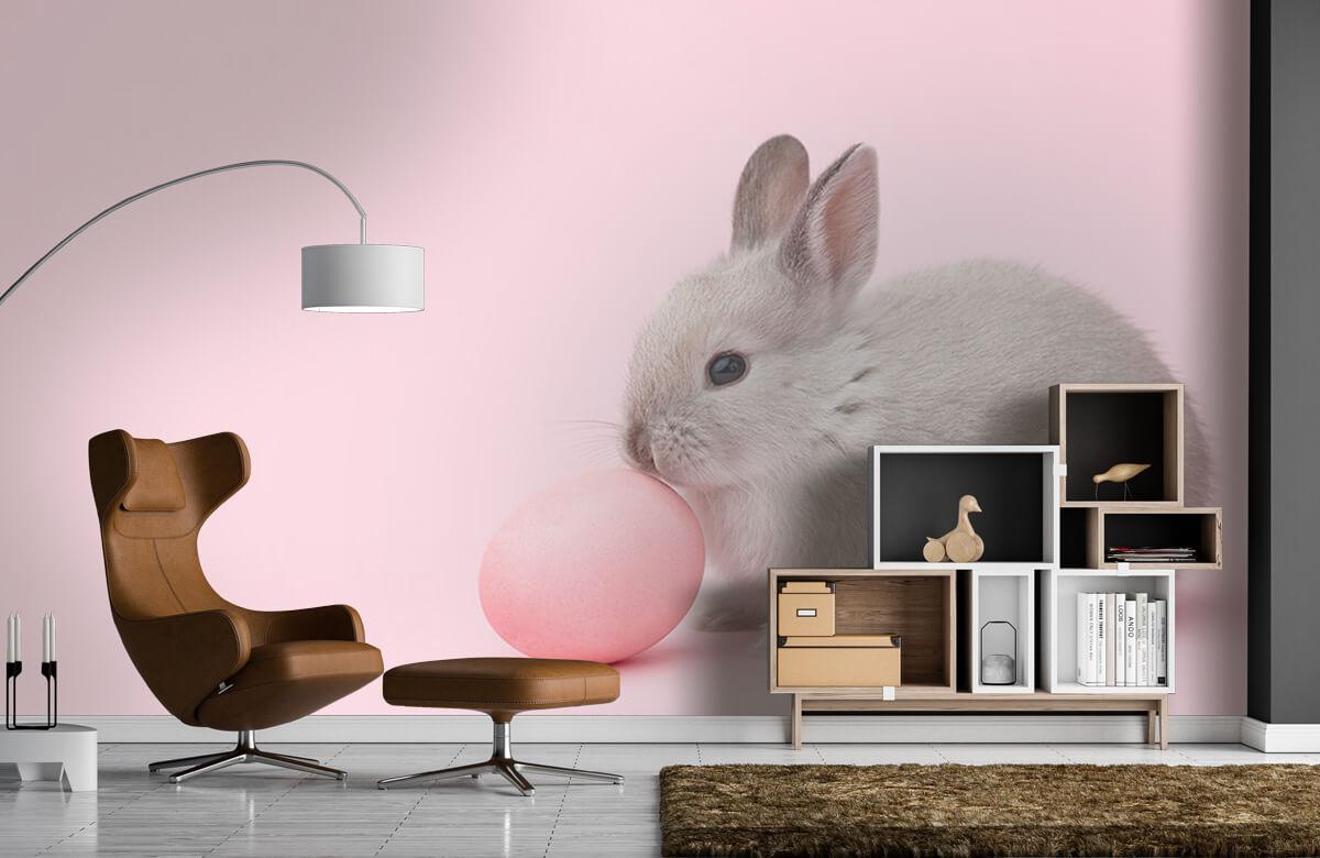 Wallpaper Kanin med ägg 8