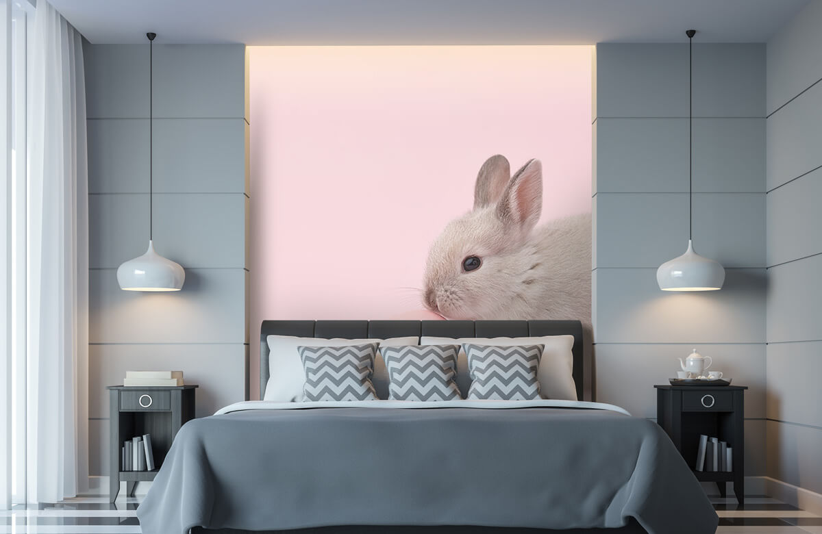 Wallpaper Kanin med ägg 11