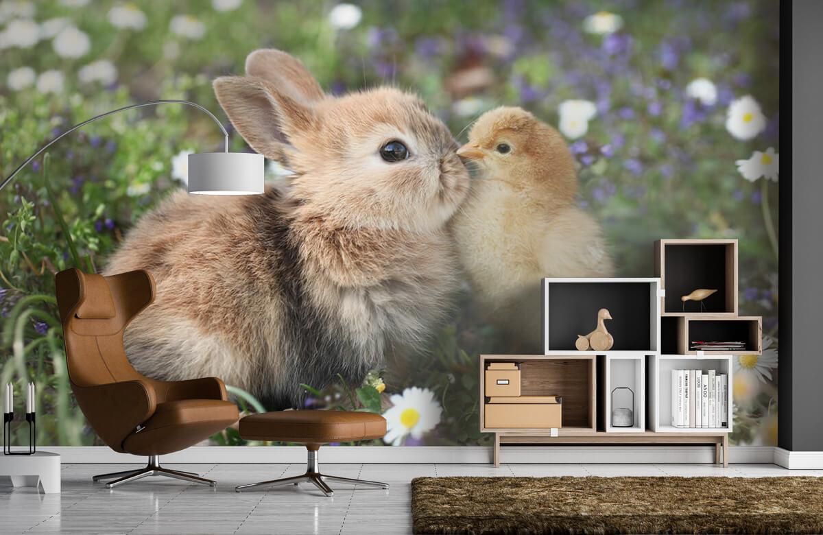 Wallpaper Kanin och kyckling 7