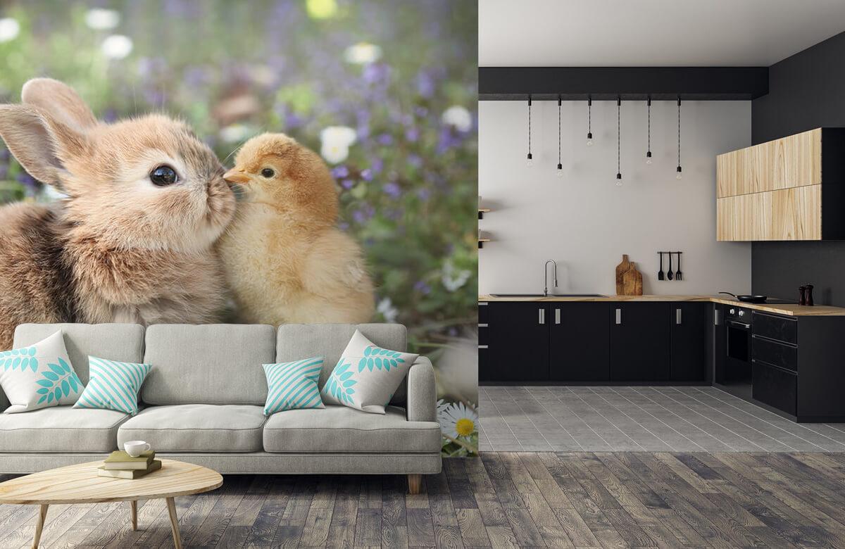 Wallpaper Kanin och kyckling 9