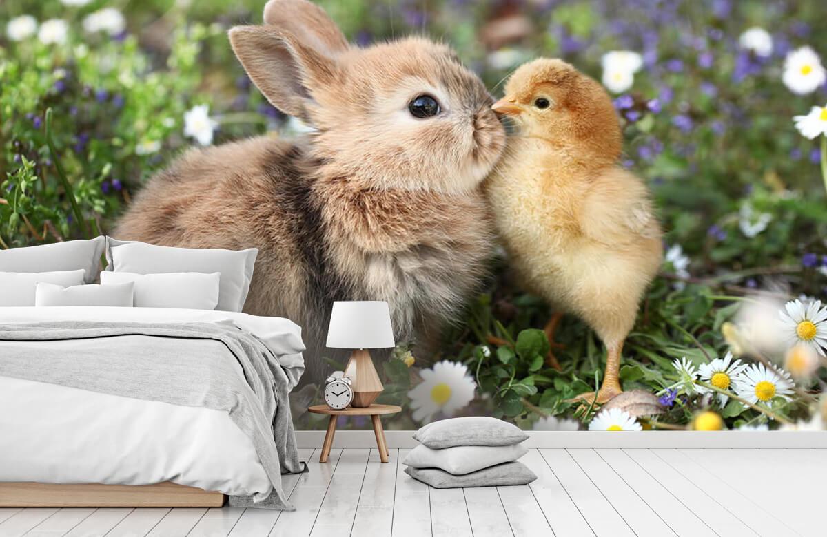 Wallpaper Kanin och kyckling 3