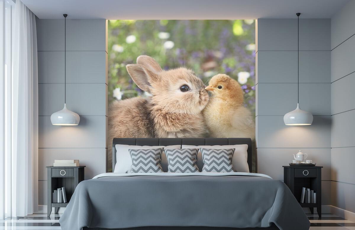 Wallpaper Kanin och kyckling 11