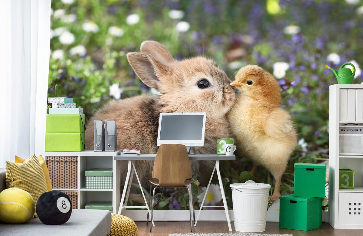 Wallpaper Kanin och kyckling 5