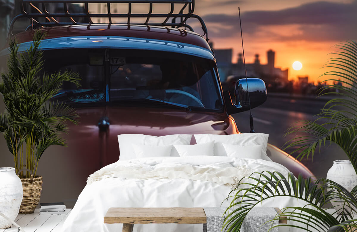 Sunset drive 7