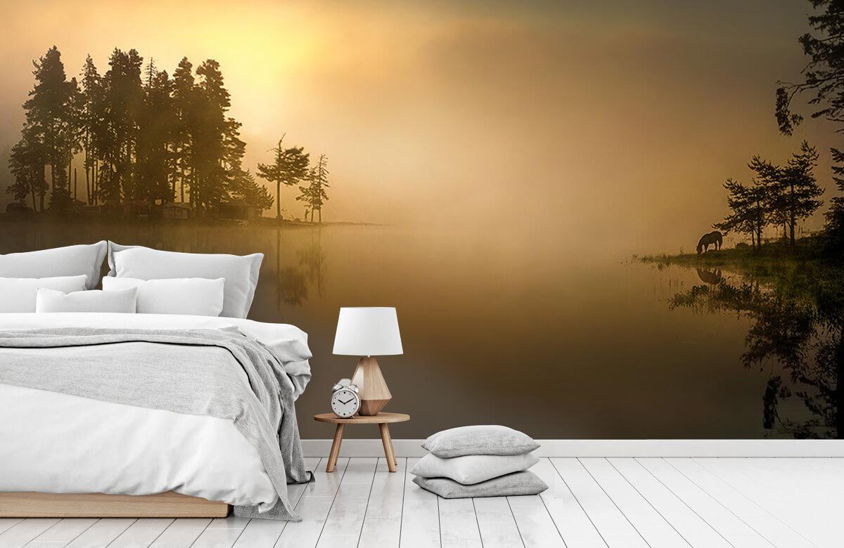 Island in the fog 6