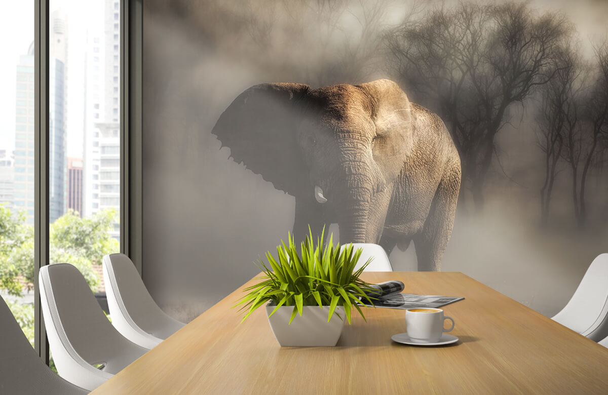 An elephant drinking water 7