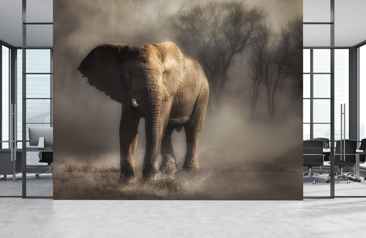 An elephant drinking water 8