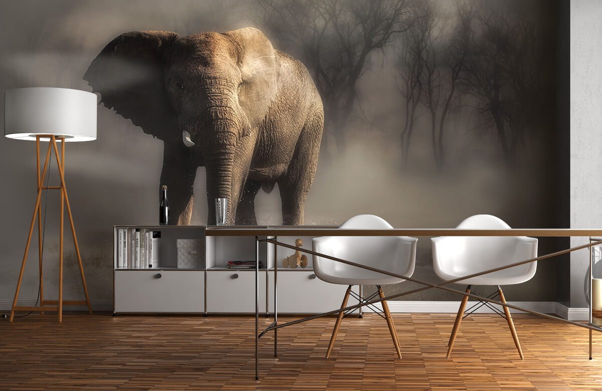 An elephant drinking water 1