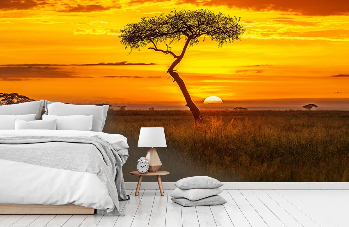 Primordial Africa 3