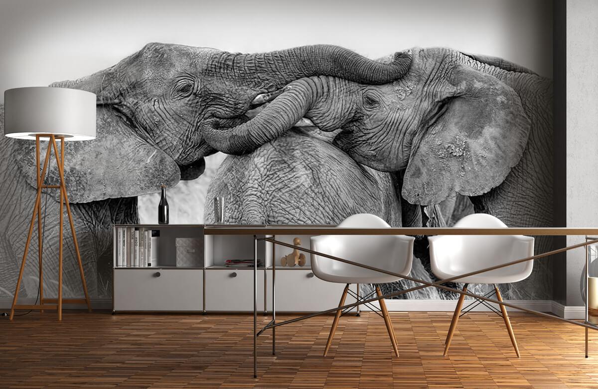 Elephant Playing 10