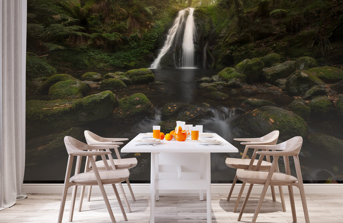 A Graceful Waterfall 4
