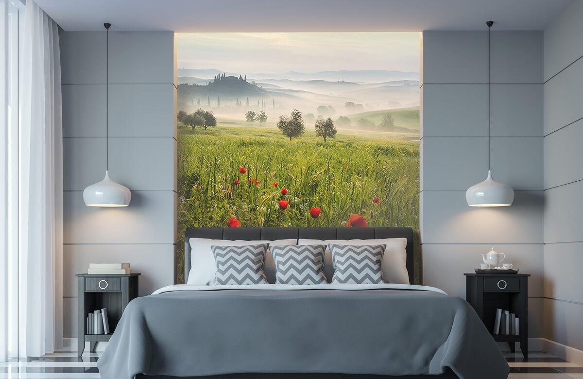 Landscape Tuscan spring 10