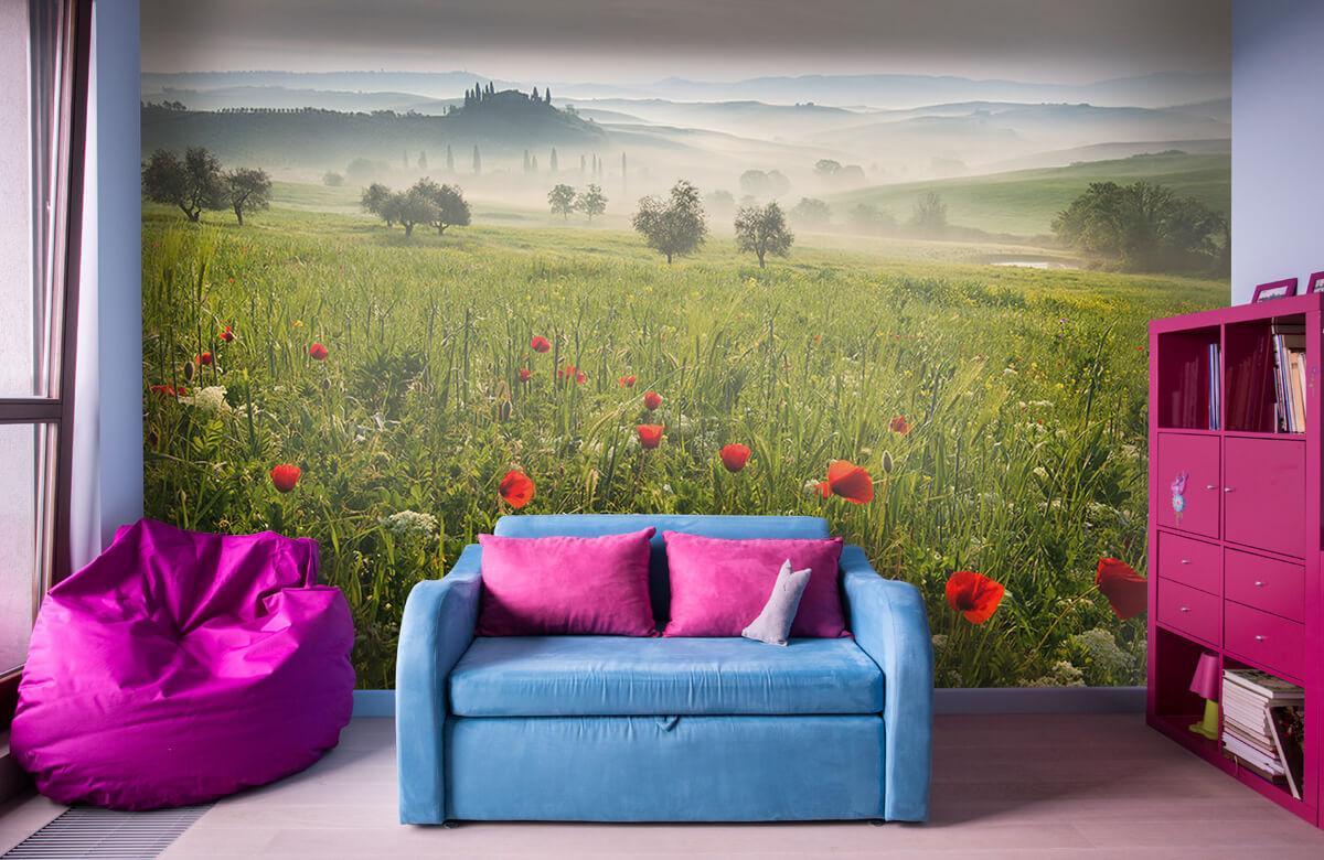 Landscape Tuscan spring 8