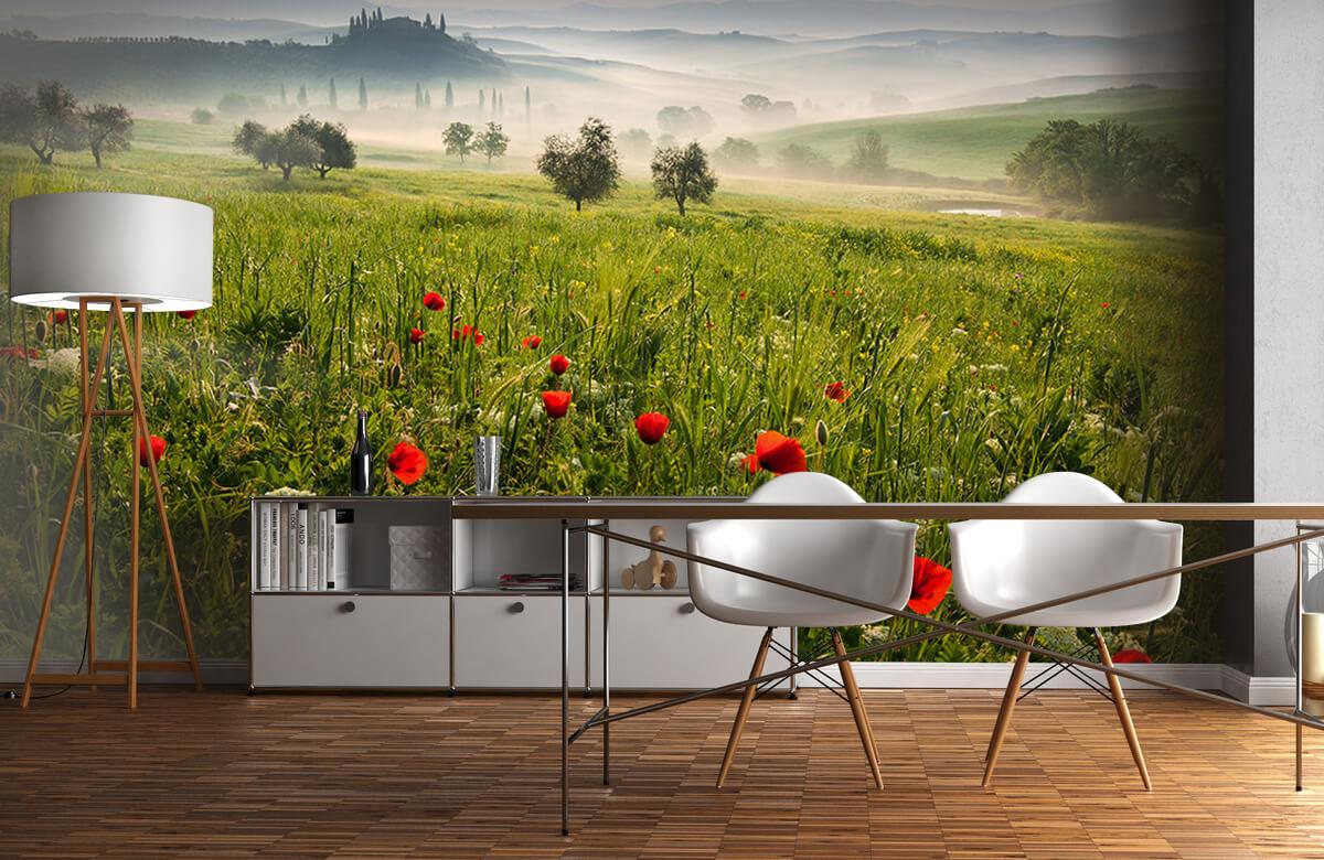 Landscape Tuscan spring 1
