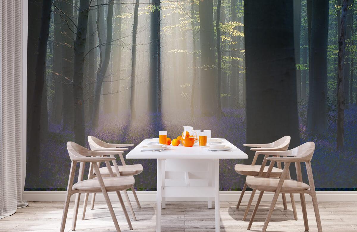 Landscape Velvet Light 3