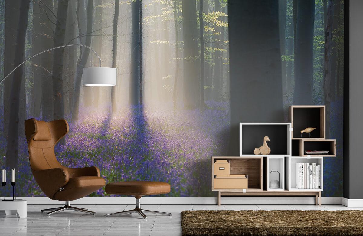 Landscape Velvet Light 7