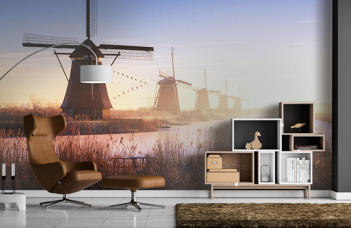 Landscape Kinderdijk 4 8