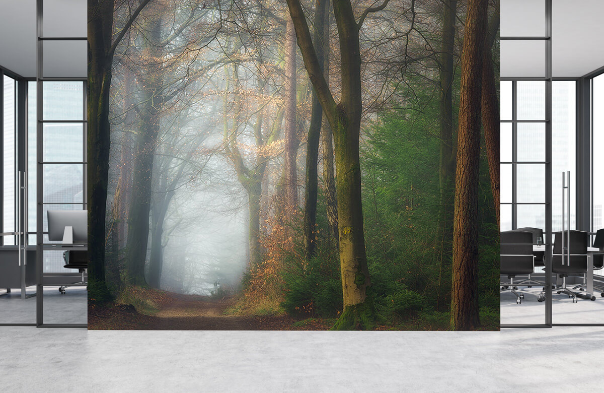 Landscape Once Upon A Dream 5