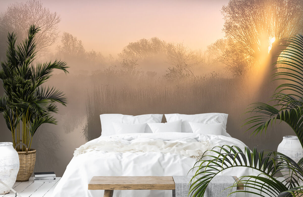 Landscape Silence morning 3