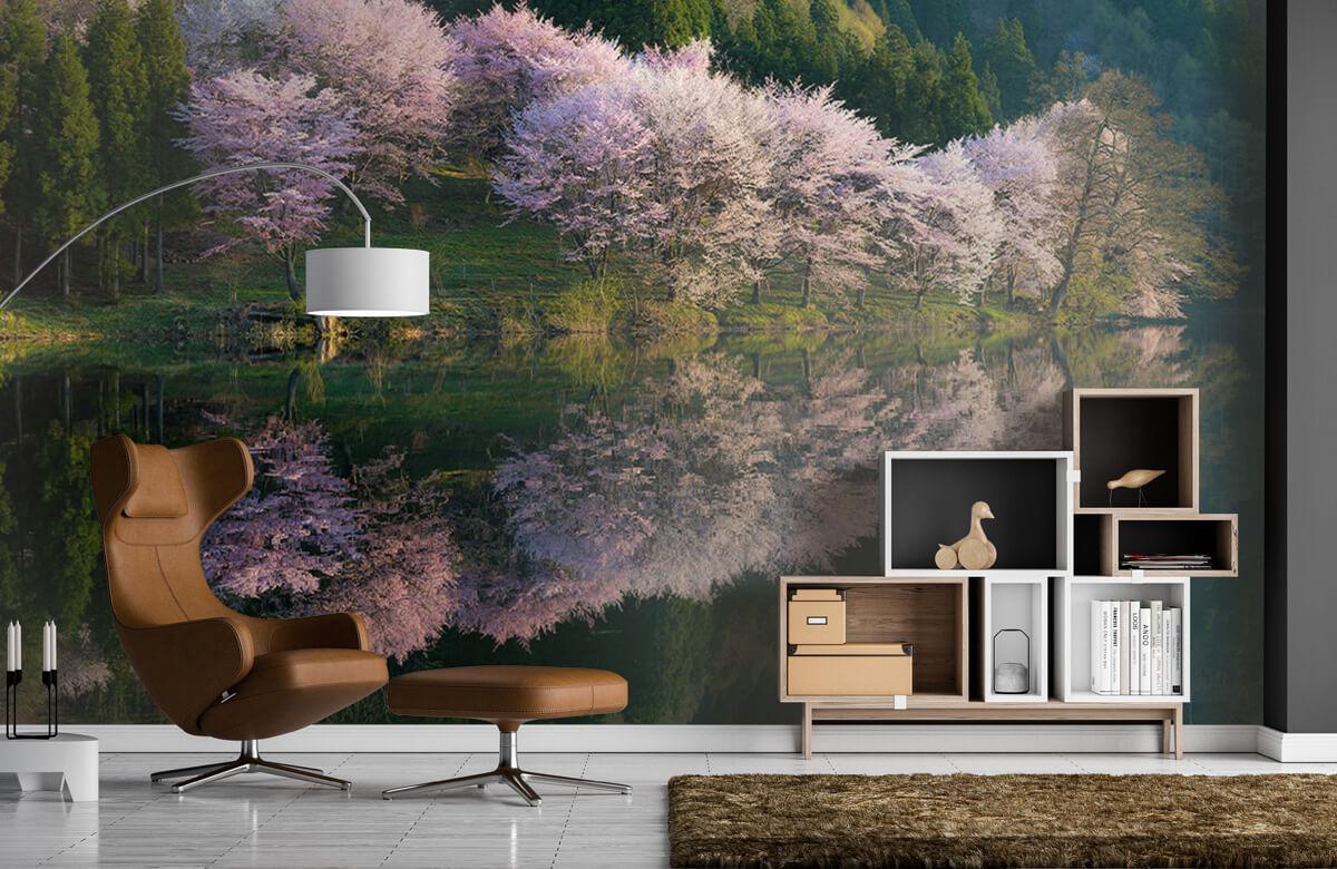 Landscape Sakura 7